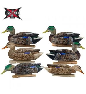 Avian-X Topflight Early Season Mallards Decoys (Pk/6)