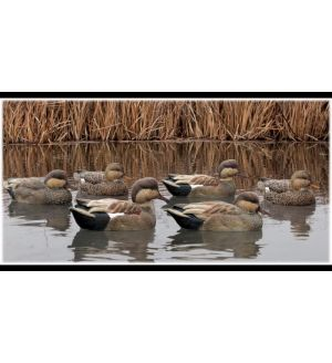 Avian-X Topflight Gadwall Decoys (Pk/6)