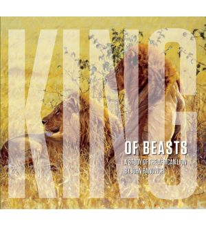 King of Beasts: A Study of the African Lion - Collector's Edition - Signed by John Banovich