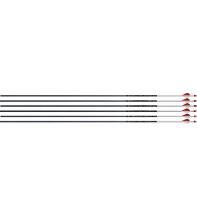 EASTON ARROW FMJ 6MM 390 W/ 2