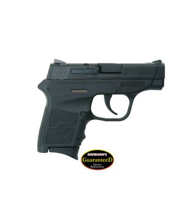 Smith & Wesson Body Guard .380