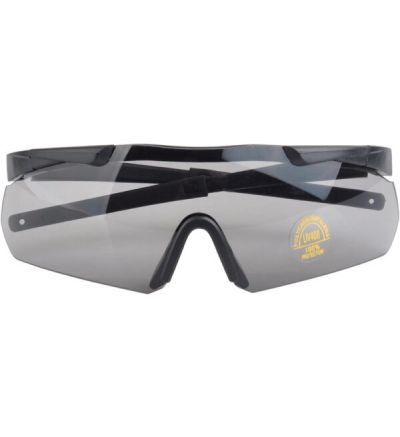 Pro Ears High Performance Shooting Glasses with Interchangeable Lens